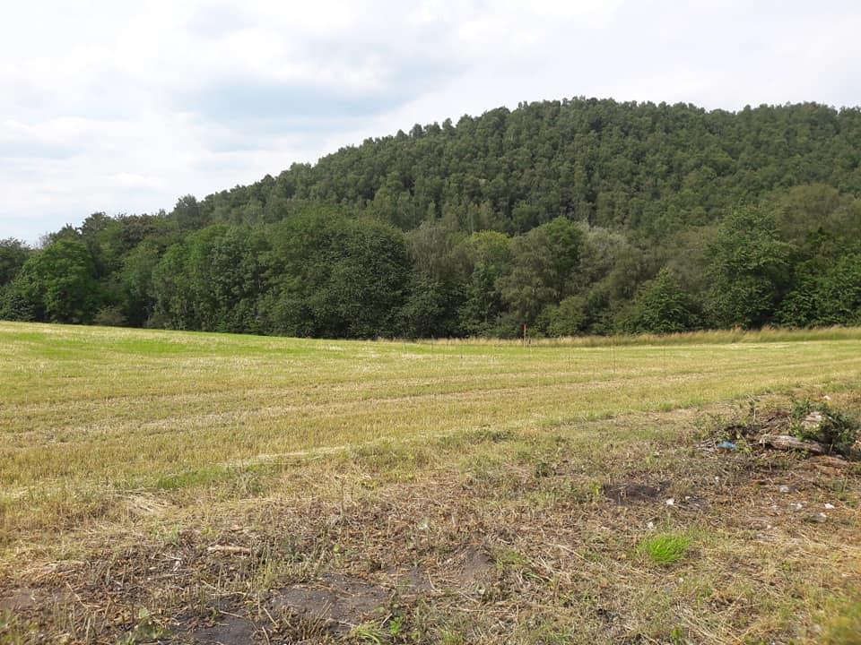 Vignoble du Martinet à Monceau-sur-Sambre et Roux